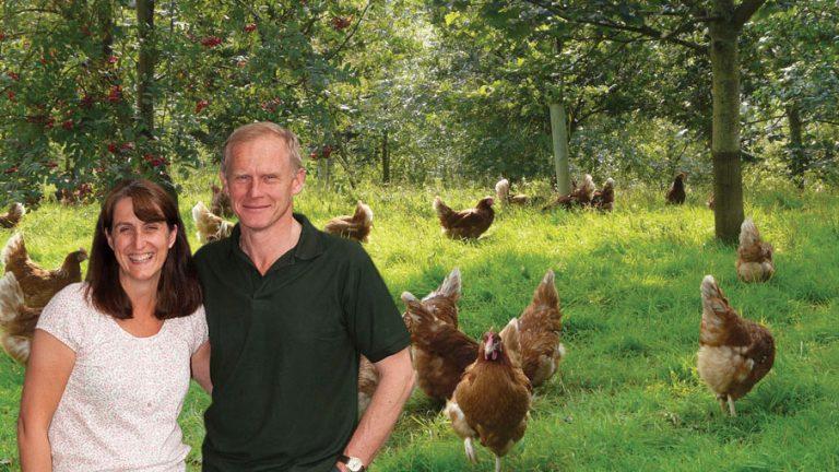 Denna ekologiskt medvetna äggproducent i Penrith i Lakesdistriktet i England investerade i en P500-panna.